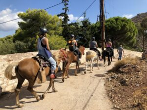 hydra horses, horse riding Greece , horse riding hydra